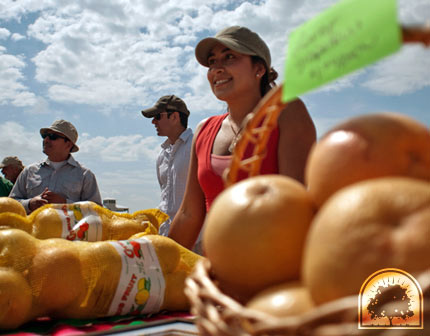 Laura's Grapefruit at the South Padre Island Farmer's Market